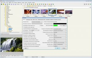 Faststone Image Viewer 2018