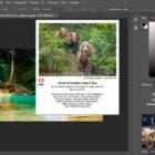 Adobe Photoshop cc 2019 русская версия